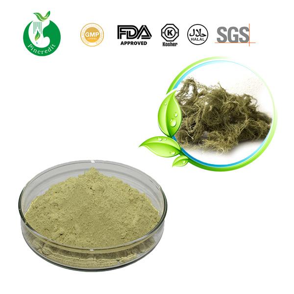 Usnic Acid 98%
