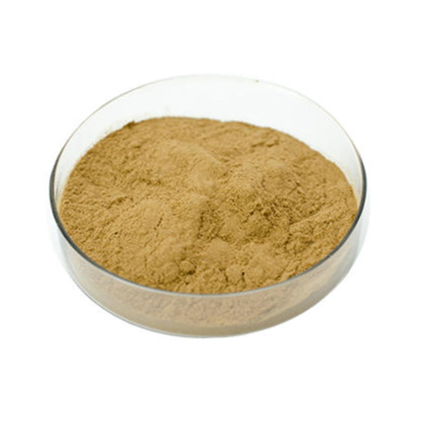 African Mango Seed Extract
