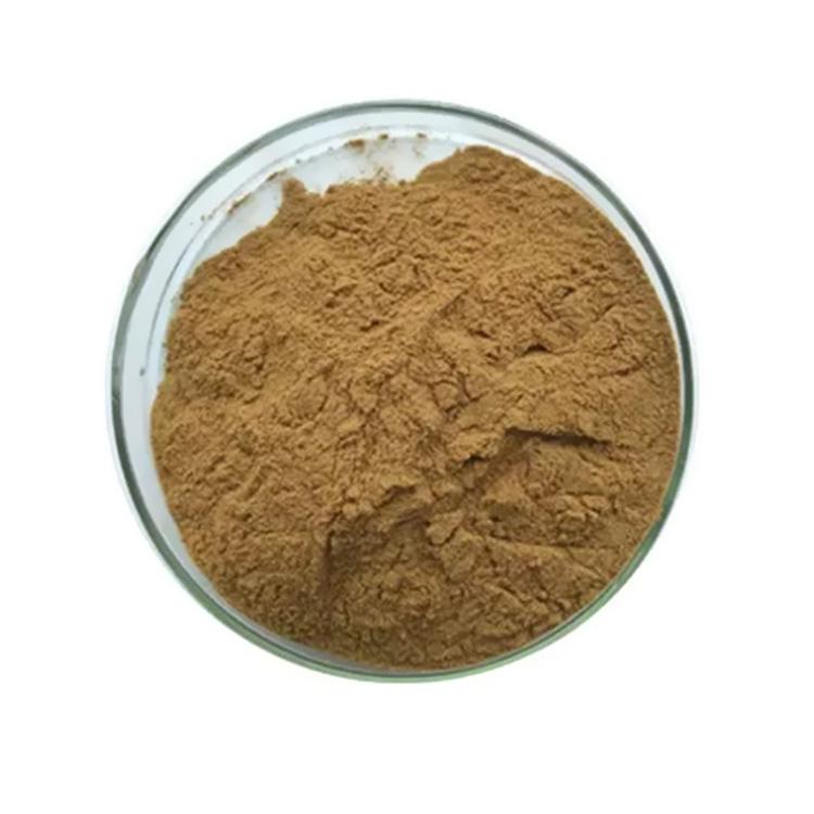 Buckwheat Extract