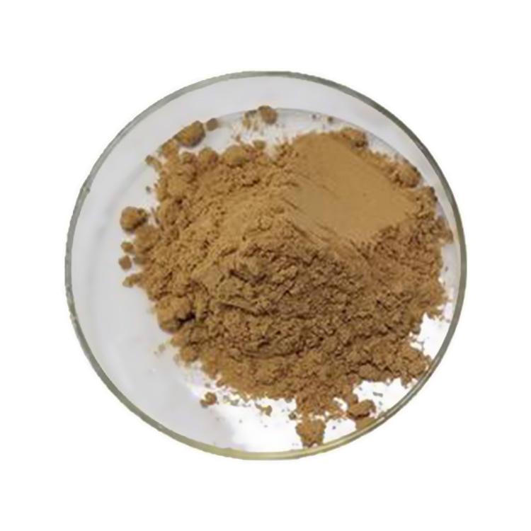 Celandine Extract
