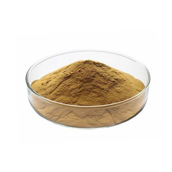 Cilantro Extract